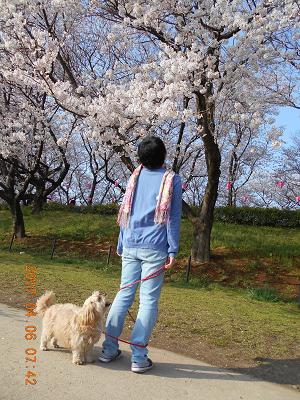 ちび犬と娘
