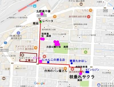 湯河原 桜 満開地図