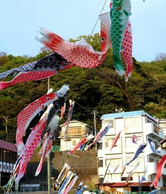 福浦港鯉のぼりsyou