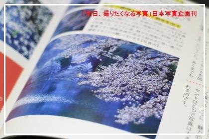 _MG_3771.jpg