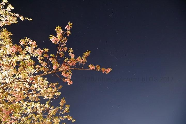 5D4_6202_170216_1207Blue.jpg