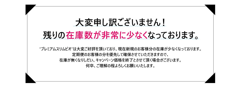 slim-bio_02.jpg