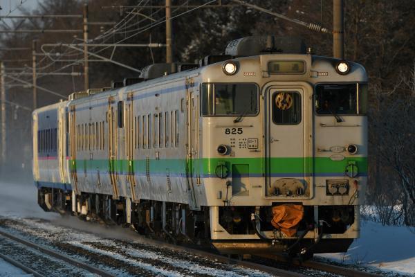 DSC_7017.jpg