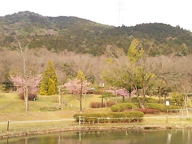 植物園1PG