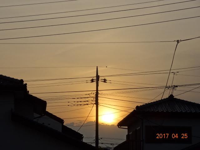2017_04250174.jpg