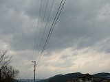 P1330998.jpg