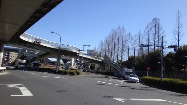 DSC06136_.jpg