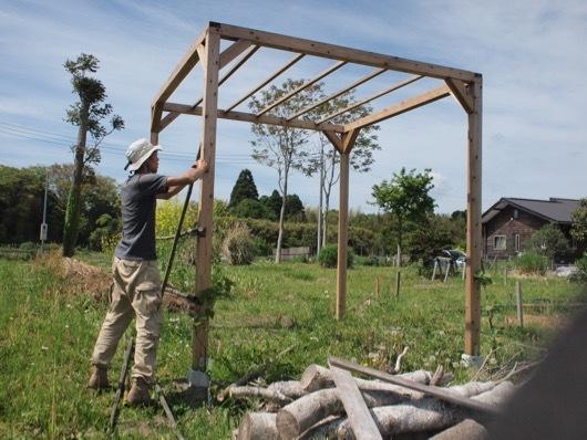 ゴーヤ用竹垣を作る