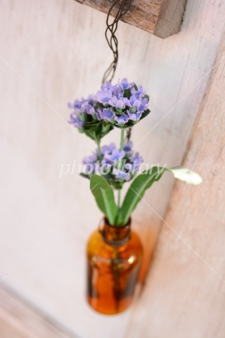 4956519 小瓶の花
