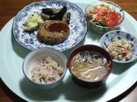 4/19 夕食 豆腐ひじきハンバーグ、海藻サラダ、こんにゃくの白和え、もやしと油揚げの味噌汁ギバサ入り、雑穀ごはん