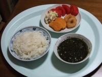 4/25 昼食 こんにゃくそうめん、ギバサ入りめんつゆ、イカリング、海老寄せフライ、トマト