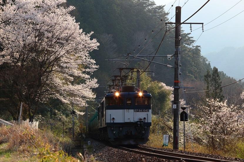 春爛漫須原にて