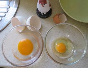 グース卵1