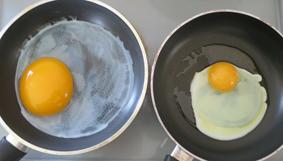 グース卵2