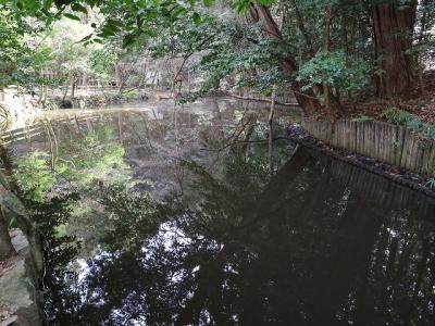 石上神宮・鏡池