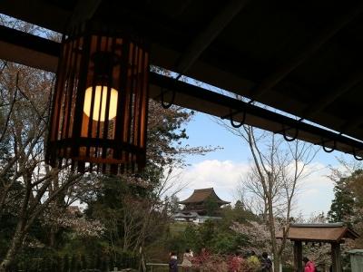 吉水神社から見た蔵王堂