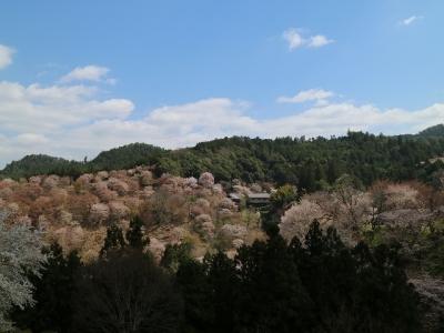 中千本から見た如意輪寺