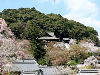 長谷寺・本坊前からの眺望
