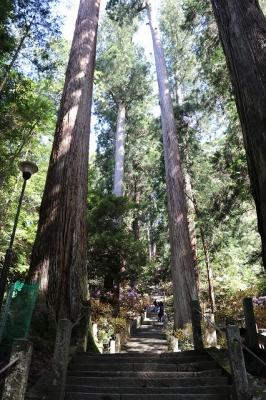 室生寺・奥の院への石段