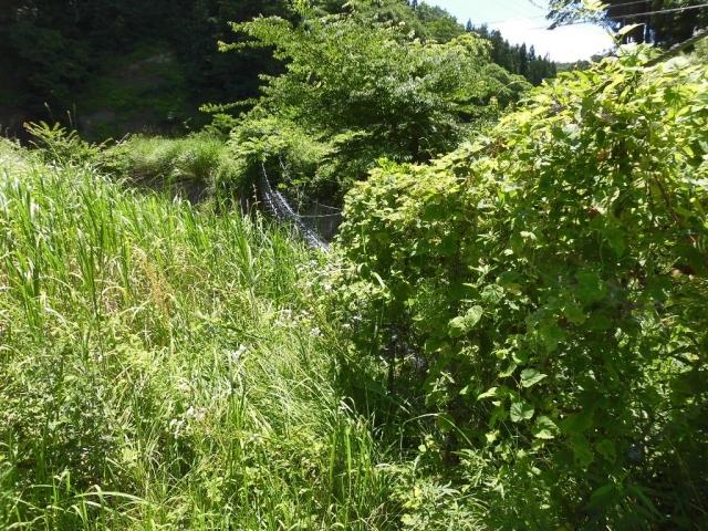 八坂小菅の水管吊橋① (2)