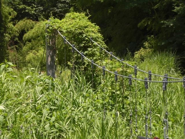 八坂小菅の水管吊橋① (4)