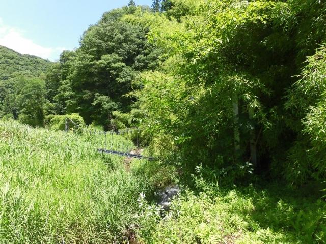 八坂小菅の水管吊橋① (6)