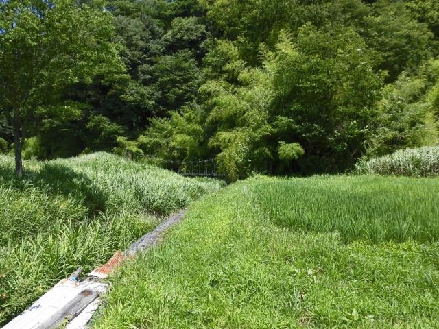 八坂小菅の水管吊橋① (8)