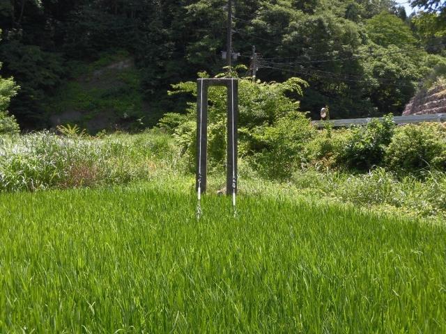 八坂小菅の水管吊橋②