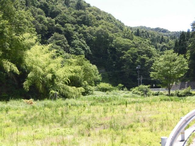 八坂小菅の水管吊橋② (8)