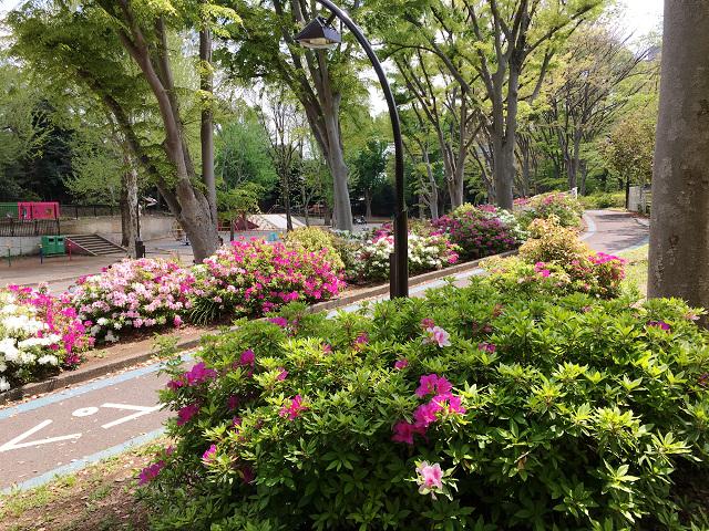 春の草木6 by占いとか魔術とか所蔵画像