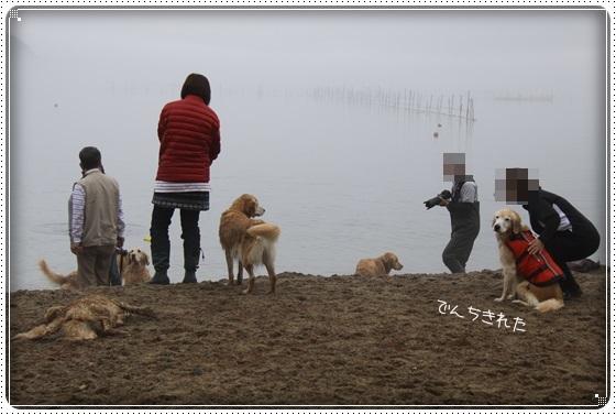 2017,4,9琵琶湖14