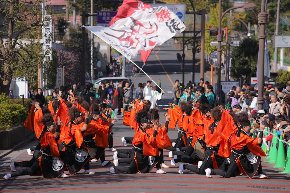 kabuto2016oya-14.jpg