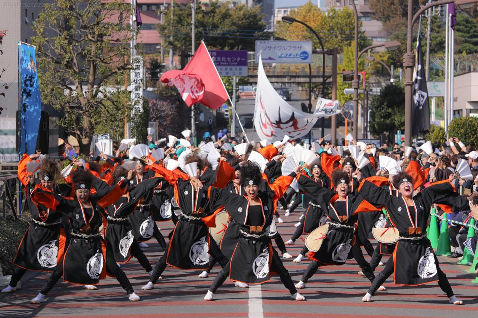 kabuto2016oya-17.jpg