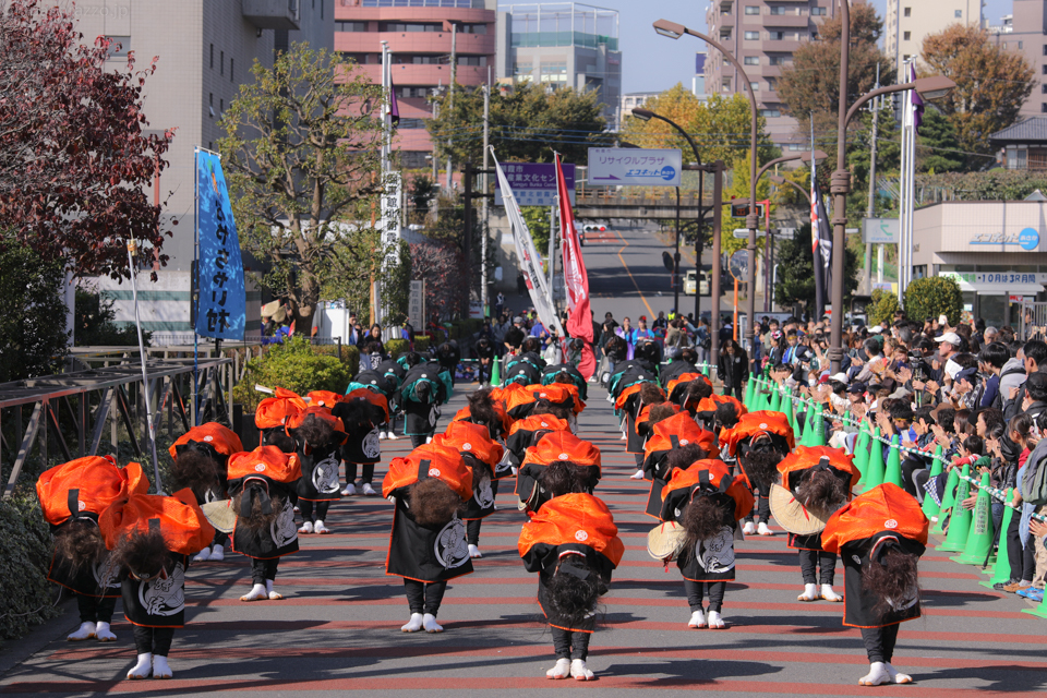 kabuto2016oya-24.jpg