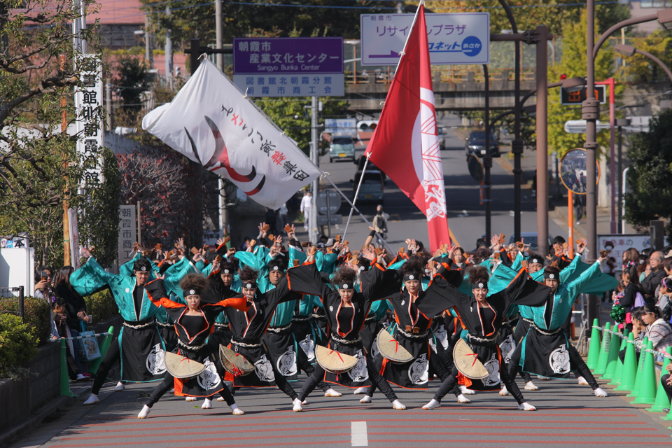kabuto2016oya-5.jpg
