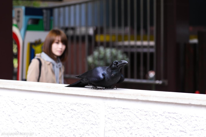 ueno20170422de-22.jpg