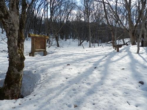 積雪状況A地点①・4月13日