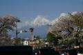富士宮からの眺め