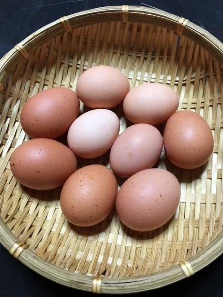 0228卵大好き
