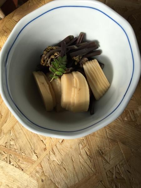 0416タケノコとワラビの炊いたの