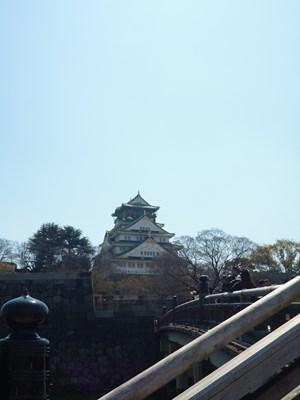 大阪城桜7