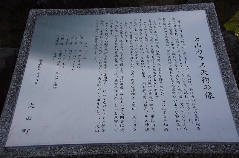 DSC09641.jpg