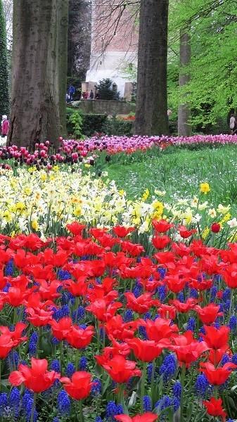 Floralia Brussels 2