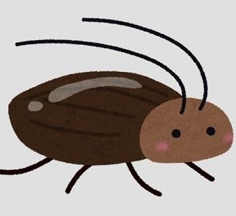 ゴキブリパン