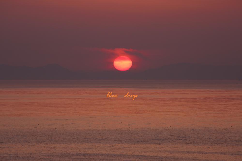 優しい夕陽