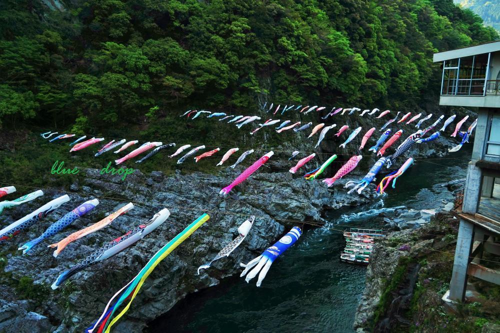 鯉泳ぐ渓谷