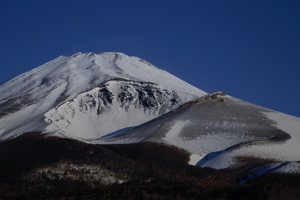 朝陽浴びる富士