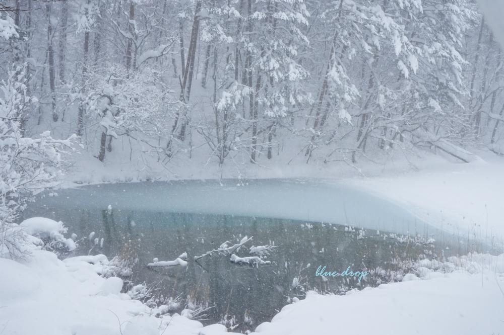 雪のある沼