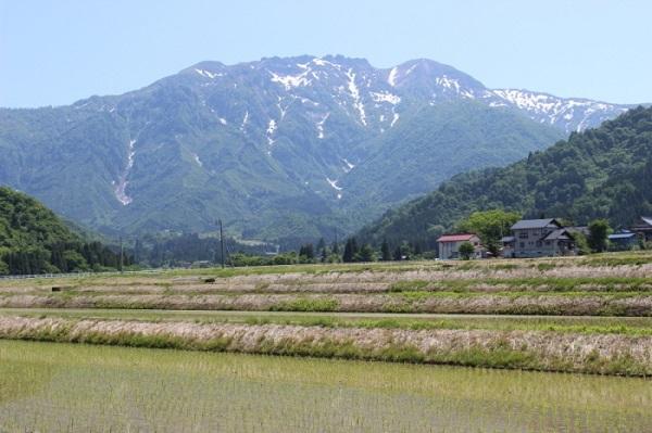 yama13八海山