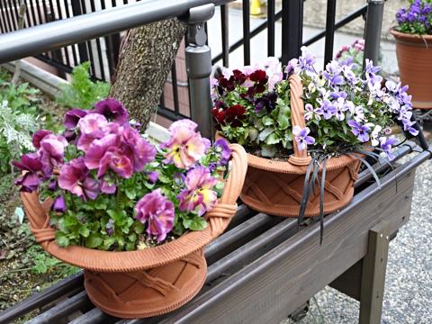 gardening297